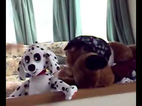Xxx Mp4 Funny Vidio X X Doggy In The Window Scooby Doo Funny 3gp Sex