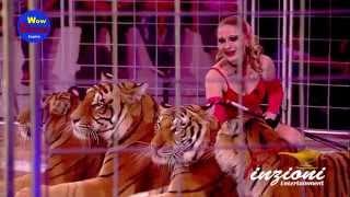 Tigers Carmen Zander 2