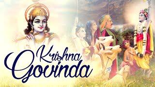 SHRI KRISHNA GOVIND GOPALA | VERY BEAUTIFUL SONGS - ART OF LIVING BHAJANS - POPULAR KRISHNA BHAJANS