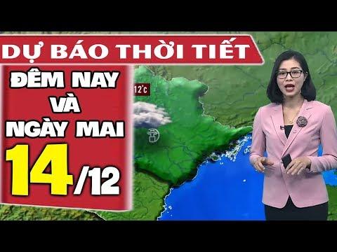 Dự báo thời tiết hôm nay và ngày mai 14/12 | Khí Lạnh Tăng Cường | Dự báo thời tiết đêm nay mới nhất