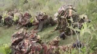 Incredible choir by kdf soldiers