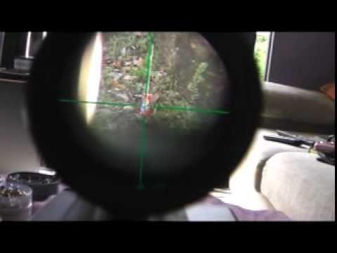 Hatsan 80 5.5mm Luneta Tasco Tiro a 50m good shot and excellent shooter. Air rifle.