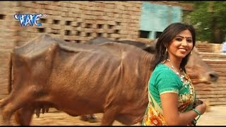 अइसन भैसा न भेटाई - Hothlali Kare Las Las | Sakal Balmua | Bhojpuri Hot Song