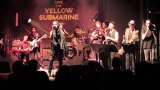 Tamir Grinberg Yellow Submarine 16th October 2013