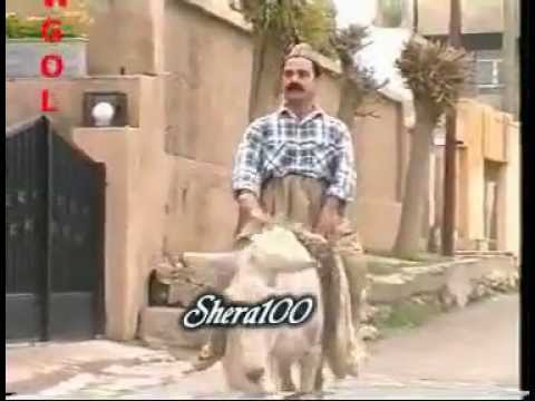 Filmi Comedy Kurdi Talai Nagbat
