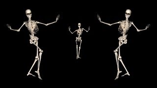 Skeleton Belly Dance Trio