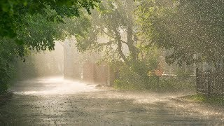 Stress Relief  Sounds, White Noise, Relaxing Nature Sounds, Heavy Rain, Relaxation, Soothing, ☯3352