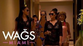 "WAGS Miami   ""WAGS Miami"" Ladies Are Living the Glitz and Glam Life   E!"