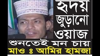 New Bangla waz 2016 Maulana Amir Hamza