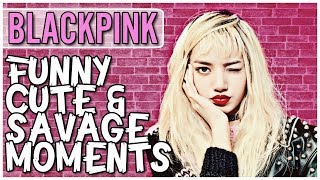 BLACKPINK FUNNY CUTE & SAVAGE MOMENTS  [Try Not To Smile Challenge]