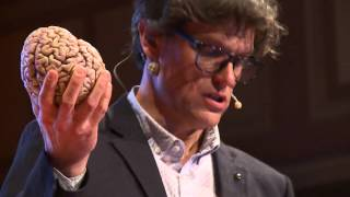 Brain concussion - Shake it and you break it | Steven Laureys | TEDxLiège