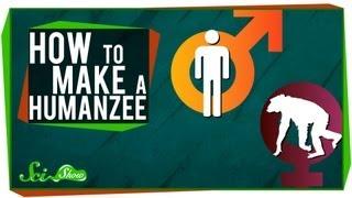 How to Make A Humanzee