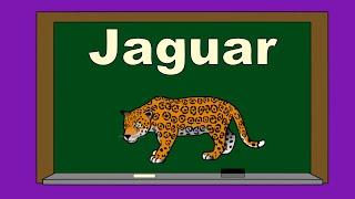 Alphabet J ABC