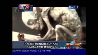 Misteri 7 Penemuan Alien Yang Berhasil Di Ungkap