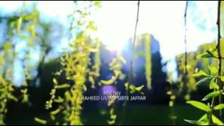 LATEST NAAT by MIR HASAN MIR 2016-2017