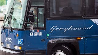 Greyhound cancels bus service in most of western Canada