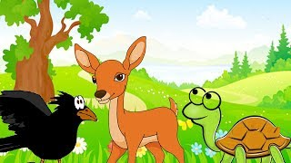 Hitopadesha Tales - Full Stories –The Talkative Tortoise & More Animal Stories - Forest Fables
