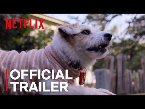 Xxx Mp4 Dogs Official Trailer HD Netflix 3gp Sex