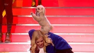 Britain's Got Talent 2016 Trip Hazard & Lucy Semi-Final Round 5 Full Performance S10E16