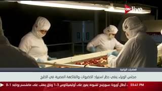 مجلس الوزراء ينفي حظر استيراد الخضروات والفاكهة المصرية في الخليج