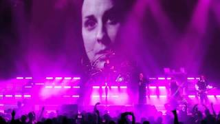 Korn - Insane (Track By Track)