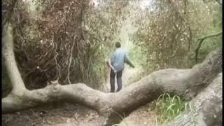 GeorGie Donovan Co-Stars w/George Kiseleff in Green River Killer 2005