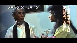 Lady Terminator (1989) Japanese Trailer AKA Nasty Hunter