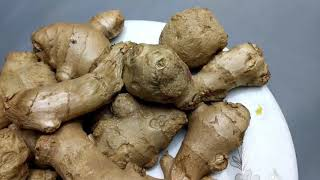The 6 Health Benefits of Ginger