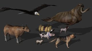 NEW ANIMALS. FREE ZOO 2 (Animals + Animations, iClone 6.54 and 7) FCMP-112