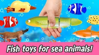 [EN] Fish toys for sea animals!! animal names for kids, kids animation, collecta ㅣCoCosToy