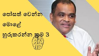 how to train your brain to rich in srilanka-sinhala  edition