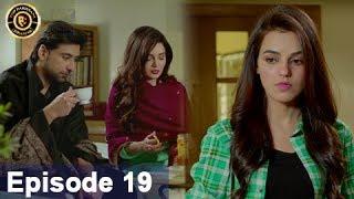 Rasm-e-Duniya - Episode 19  -  1st June 2017 - Armeena Khan & Sami khan Top Pakistani Dramas