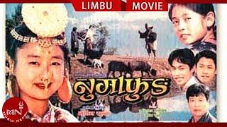 Superhit Limbu Movie  Numafung | Alok Nembang | Most International Awarded Movie