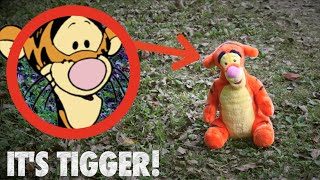 I FOUND TIGGER IN REAL LIFE! *Winnie The Poohs Missing?*