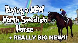 Buying a NEW North Swedish Horse + Big News! - Star Stable Online