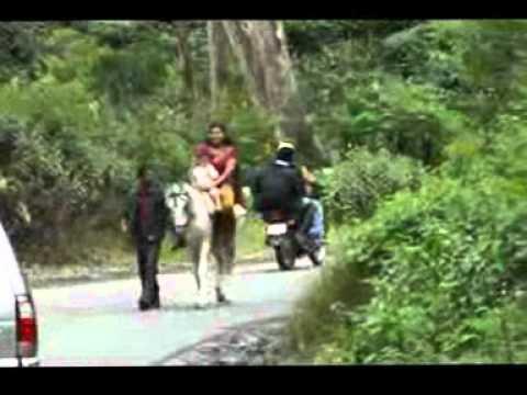 Desi Girl horse ride