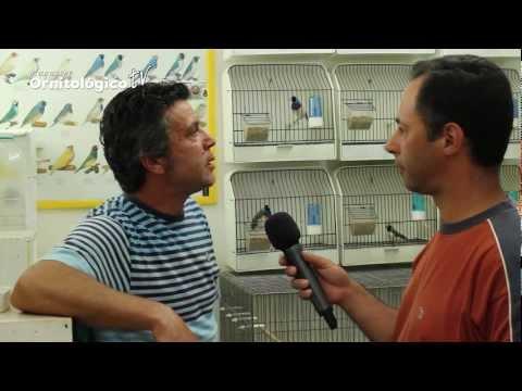 MOTV 9 António Rosa e os Diamantes de Gould