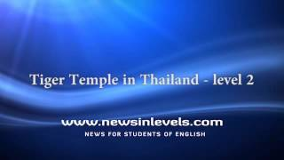 Tiger Temple in Thailand - level 2