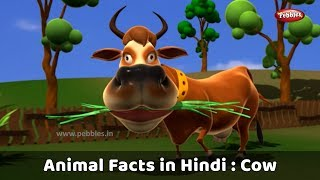 Animal Facts in Hindi | Cow Facts in Hindi | Cow Essay in Hindi | Cow Song Hindi | Cow Story Hindi