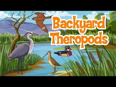 COMBOIO DOS DINOSSAUROS Backyard Theropods DINOSAUR TRAIN ZigZag Kids HD