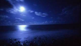 Moonlight Shadow -  Dana Winner