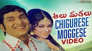 Aalu Magalu Movie Songs - Chigurese Moggese Song - ANR, Vanisri