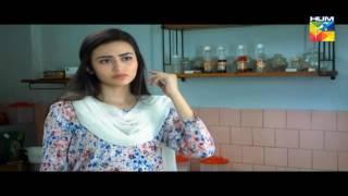 Zara Yaad Kar Episode 2 22 March 2016