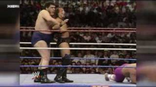 WrestleMania Recap:  WrestleMania 6