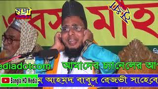 হযরত মাওলানা ক্বারী নাজিম উদ্দিন রেজভী ছুন্নী আল কাদরী Mridha HD.