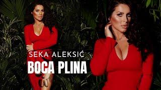 SEKA ALEKSIC - BOCA PLINA - (AUDIO 2017) HD