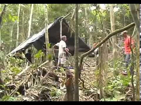 Avião cai na selva amazônica e é localizado cerca de 20 anos depois REPORTAGEM COMPLETA