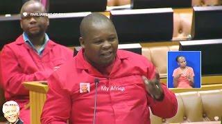 Chaos In Parliament AGAIN. EFF vs ANC and  David Mahlobo
