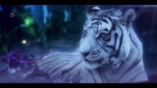 Rubaru  Full Video Song edit by Bollywood fanrk