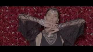 Akcent feat  Sandra N   Amor Gitana Official Music Video